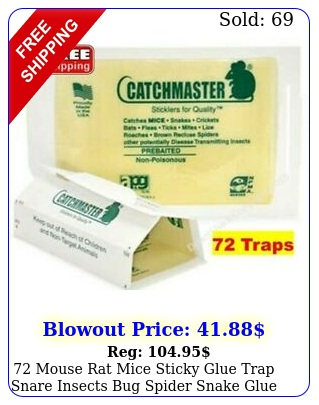 mouse rat mice sticky glue trap snare insects bug spider snake glue board