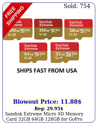 sandisk extreme micro sd memory card gb gb gb gopro max hero her