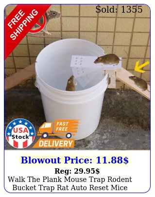 walk the plank mouse trap rodent bucket trap rat auto reset mice catcher human